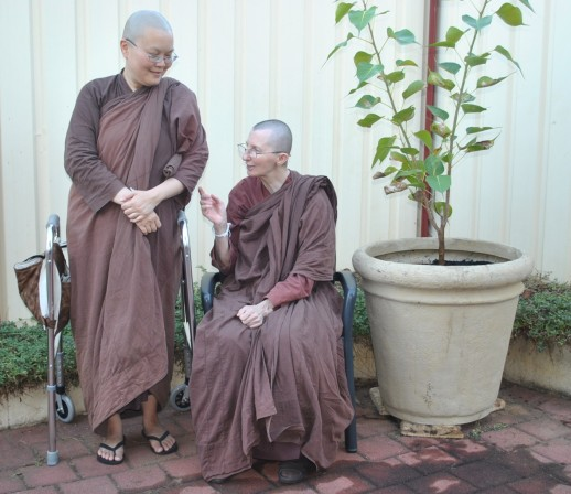 Ayya Vayama Bhikkhuni, Ayya Seri Bhikkhuni and the Bodhi Tree outside the Sala of Patacara Bhikkhuni Hermitage on 28th April 2013