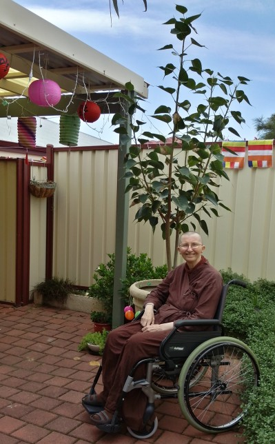 Ayya Vayama Bhikkhuni and Bodhi Tree outside the Sala of Patacara Bhikkhuni Hermitage on 2nd of May.